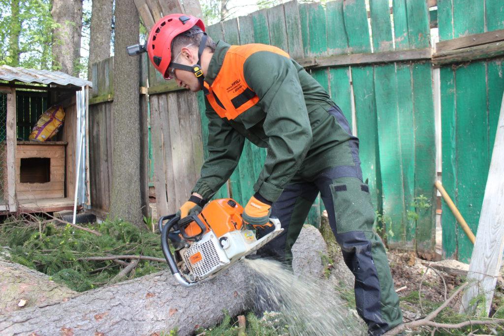 Спиливание деревьев Сергиев Посад