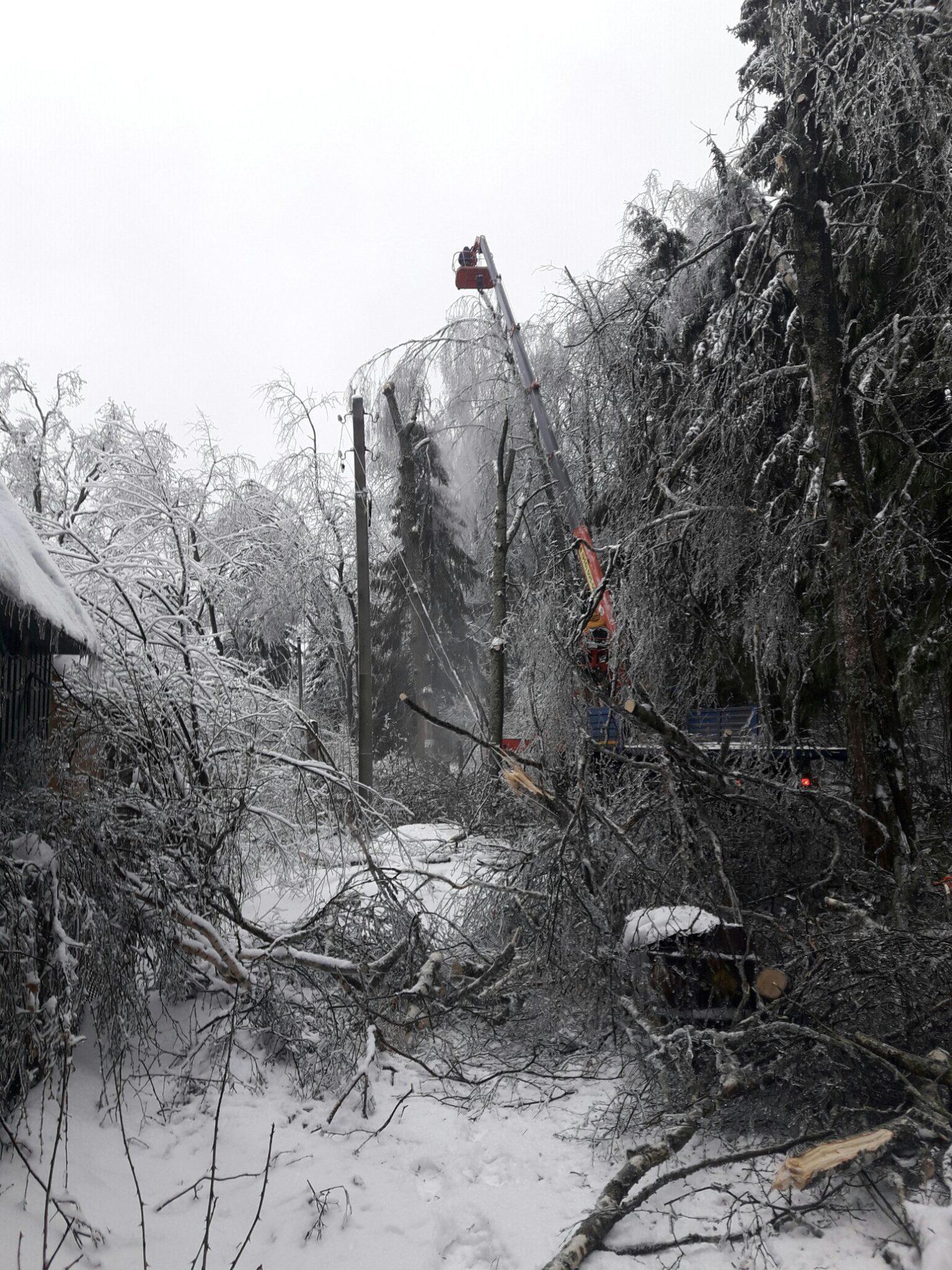 Обрезка деревьев над дорогой после ледяного дождя СНТ Дружба Сергиев Посад