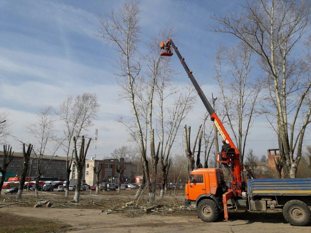Обрезка деревьев В Сергиевом Посаде возле завода Звезда
