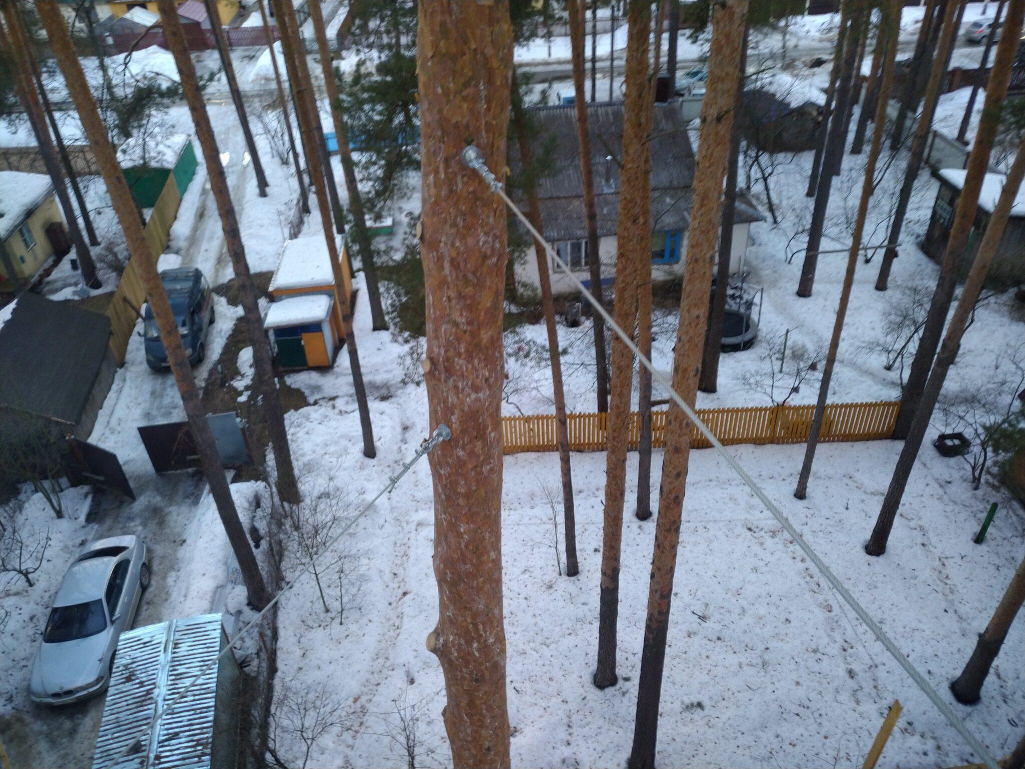 Укрепление деревьев тросами Дубна